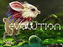 Новые автоматы Evolution в онлайне