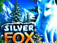 Новые автоматы Silver Fox
