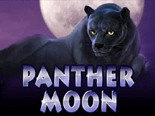 Новые автоматы Panther Moon